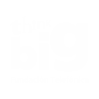 Think Big Uk website project